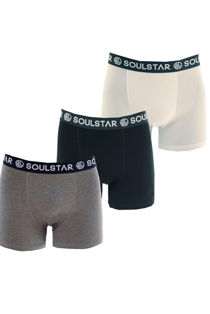 Classic Cotton Blend Triple Pack Hipster Trunk