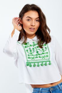 Collared Cropped Shirt With Embroidery Embellishment