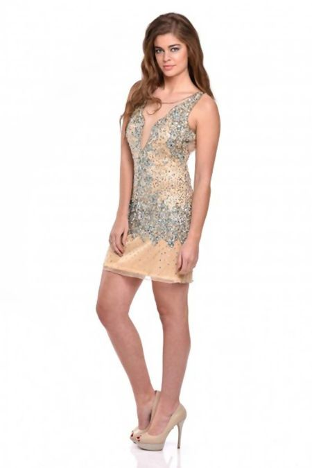 Beige Handcrafted Sequin Fitted Mesh Dress