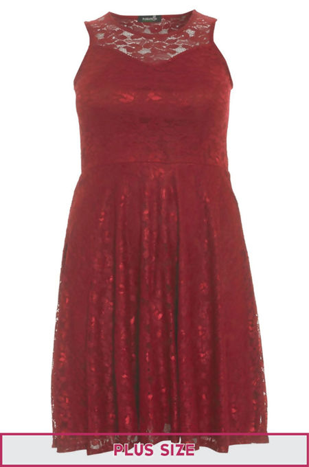 Plus Size Red Sleeveless Floral Lace Skater Dress