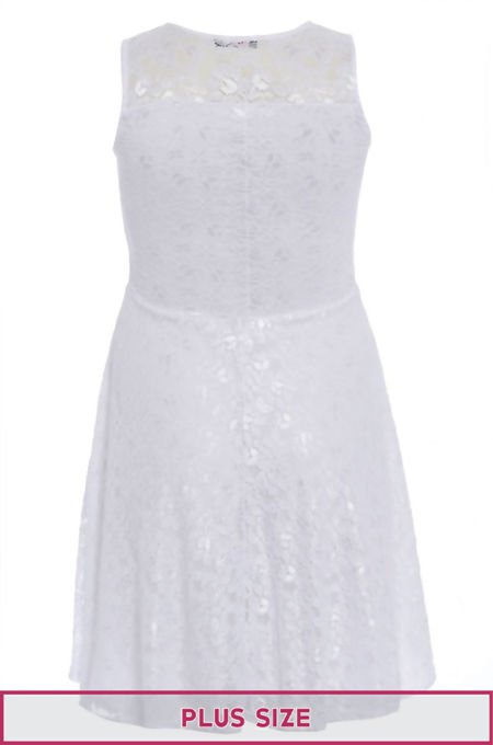 Plus Size White Sleeveless Floral Lace Skater Dress