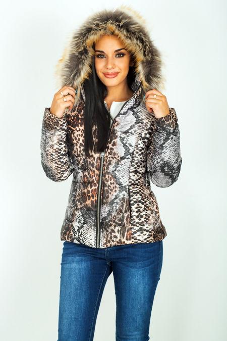 Snake Printed  Puffer Hood Jacket