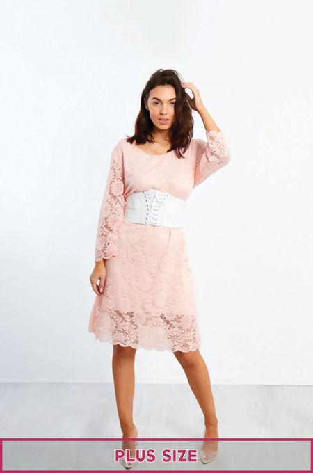 Plus Size Lace Mesh Dress
