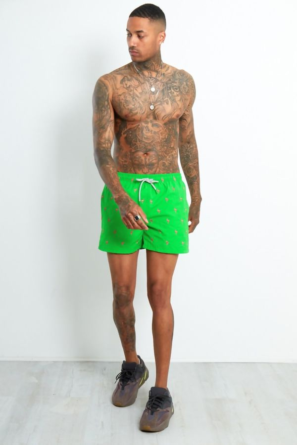 Green Flamingo Shorts