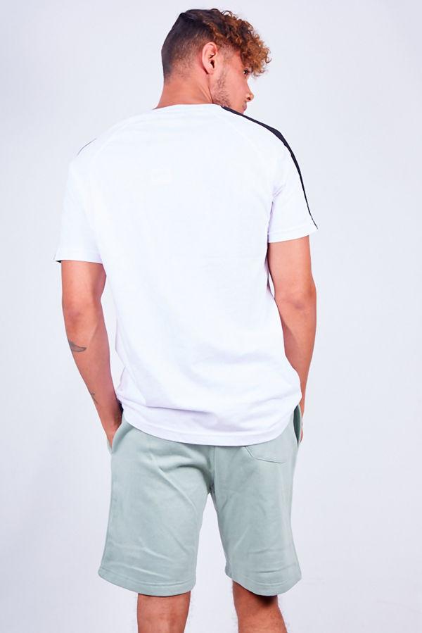 Mint Green Jersey Sweat Shorts