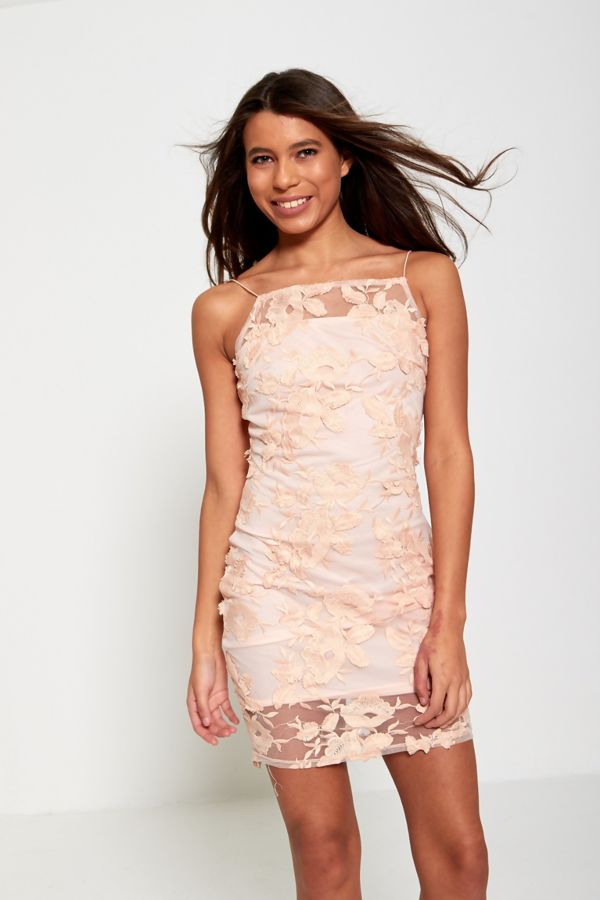 Blush Floral Mesh Overlay Mini Dress