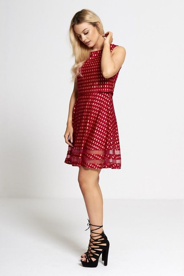 Wine Lucy Lace Overlay Mesh Trim Skater Dress